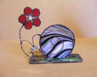 Garden snail  with flower