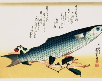 "Japanese Ukiyoe, Woodblock print, antique, Hiroshige, ""Grey Mullet & Udo"""
