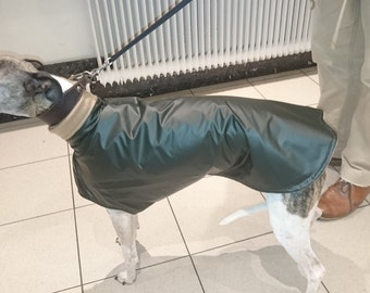 COAT IMPERMABLE Greyhound whippet
