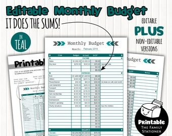 Printable Monthly Budget Planner Editable PDF, Budget Spreadsheet, Financial Planner, Money Management, Home Budget, Instant Download