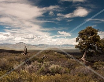 Idaho Craters of the Moon Landscape -  Fine Art Print