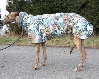 Greyhound coat, greyhound clothing, greyhound winter coat,