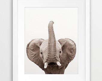 Elephant Print, Elephant Wall Art, Elephant Trunk Up, Safari African Animal Print, Nursery Animal, Kids Room Prints, Printable Nursery Decor