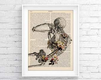 Anatomy print, Medical poster, Upcycled Page, Vintage Illustration Print Wall decor Decorative Book Page Retro Poster Vintage Book print 036