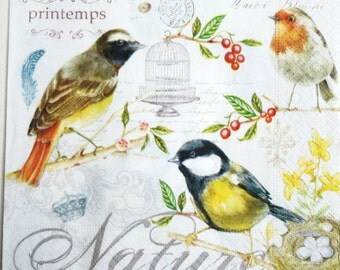 Set of 2 napkins,decoupage paper napkins Birds Decoupage paper Napkin for decoupage