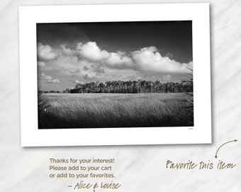 Signed 12x18 Black & White Fine Art Photo. Crystal River, Florida Salt Marsh. Matted to 18x24