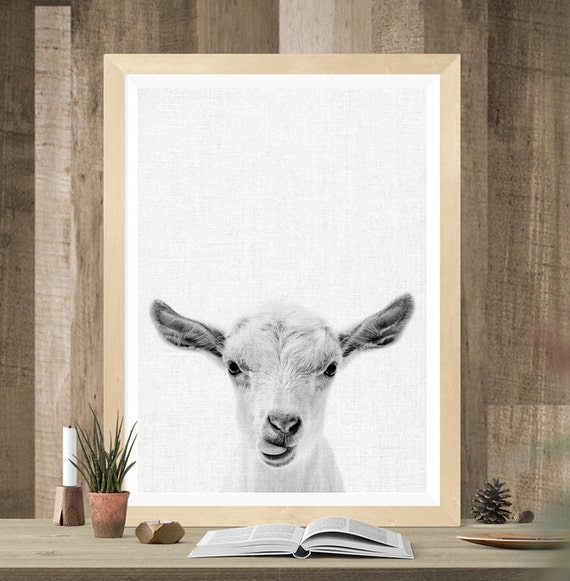 Cute Black Wall Decor : Cute print sheep photo printable wall art gift