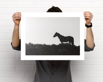 "Wild horse poster-""Solitude'"