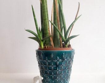 Retro teal plant pot