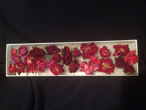Real dried roses dried flowers craft supply wedding for Dried flowers craft supplies