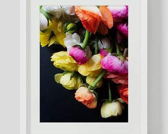 Colorful Ranunculus Print, Flower Print, Colorful Wall Art Printable, Printables, Instant Download, Download, Ranunculus, Flower