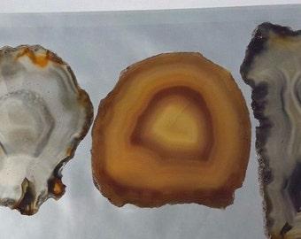 Natural Brazil Agate Slices Geode Polished Slab Quartz Lot (5) - N12