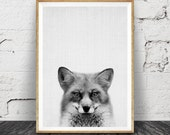 Fox Print, Woodlands Nursery Wall Art, Black White Grey Decor, Kids Room Poster, Forest Animal, Printable Instant Digital Download