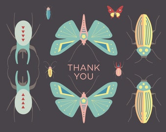 Entomology Beetles and Bugs Thank You Card - GC1106