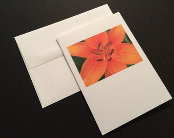 Daylily After Rain. Orange Flower. Blank Greeting Card. Note Card. Photo Card.