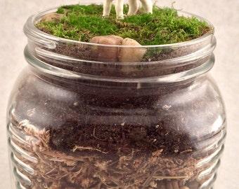 """Live Moss Terrarium with """"Hagen-Renaker"""" Lamb Figurine"""