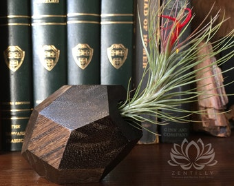 Tillandsia Geometric Wood Vase by Zentilly©
