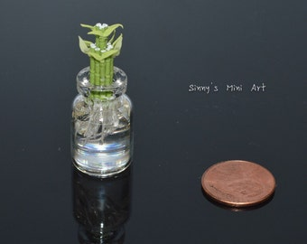 1:12 Miniature Lucky Bamboo in Glass Vase/ dollhouse miniature plant/ A054