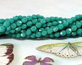 4mm Glass Beads, 50 Pcs. PERSIAN TURQUOISE Czech Fire Polished Glass Beads