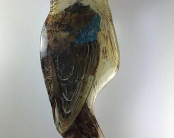 Kookaburra Bird , Fused Glass Kookaburra , Australian Kookaburra paint