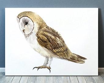 Barn owl print Bird art Watercolor poster Nursery print ACW822