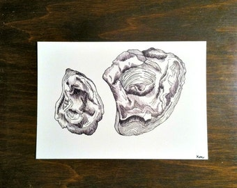 "4x6 ""Oysters"" Card Stock Print"