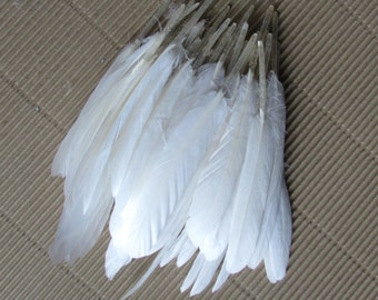 White Goose Feathers (Small)