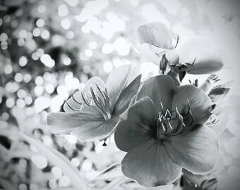 Sparkling Floral