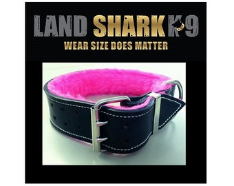 Black Leather Dog Collar with Fluro Pink Fur Padded Inner Lining