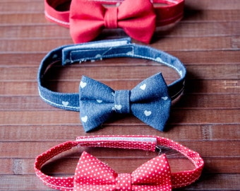 Valentines Day Bowtie for Boys