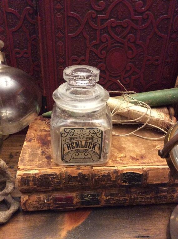 Potion Bottle, Hemlock, Witch's Pantry, Halloween Prop (0054)