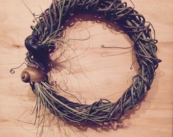 Less is More - Living Wreath - Vine Wreath