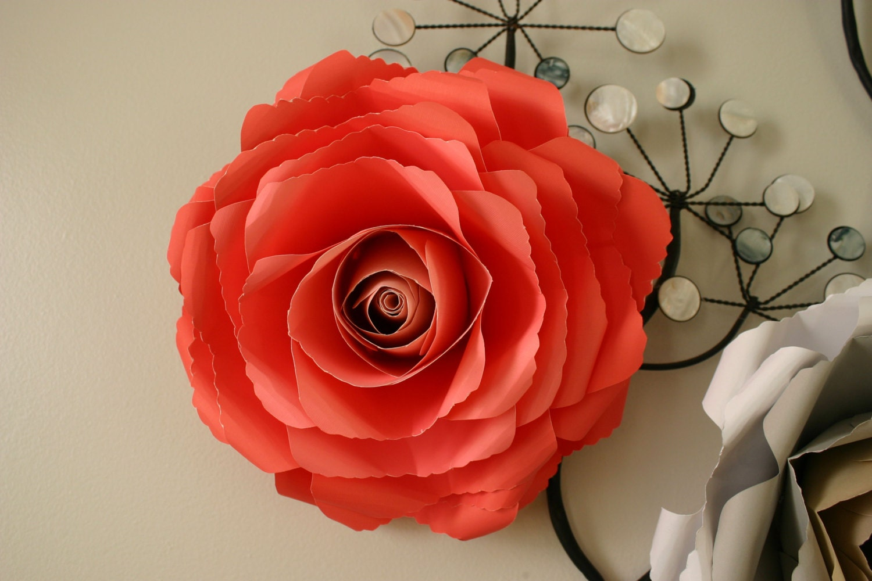 Giant paper flower / large paper flower