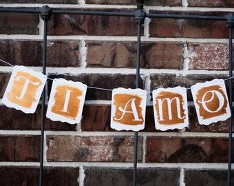 I Love You - Valentine Banner - Handpainted Metallic Wash