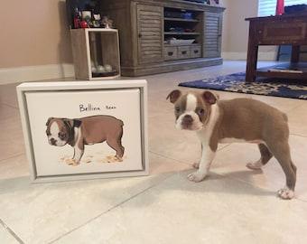 New Pet Gift, New Kitten, New Puppy Gift, Unique Present, Pet Lover Gift, Custom Pet Illustration