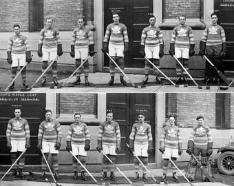 1929 Toronto Maple Leafs Team Photo 8X10