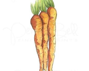 Carrot Print, Southern Art, Kitchen Print, Vegetable Print, Illustration