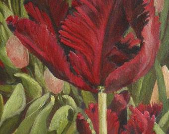 May - Botanic Gardens, Denver - original oil painting of a red tulip by professional artist Anita Dewitt