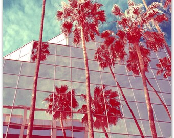 Looking Up in LA - Photo Print