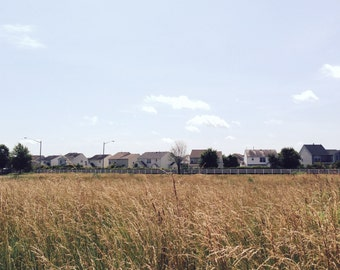 Suburbia Landscape Photograph Neighborhood Minimal Picture Man Vs Nature Image