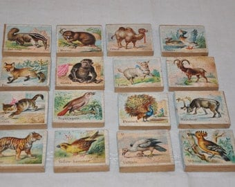 16 Vintage wood & paper litho childrens blocks animals  ABC's