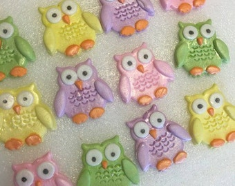 Owl Cupcake Toppers (12)