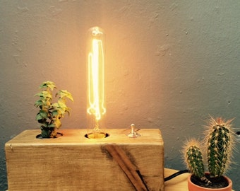 Wood block lamp, with life plant