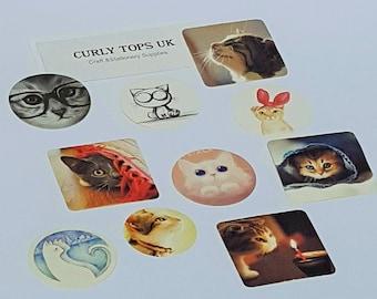 Cat stickers, cute cat stickers, cat sticker, cute sticker, kawaii stationary, Kawaii cats, Planner stickers