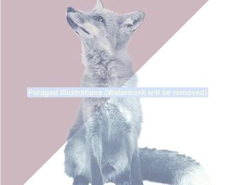 Digital Fox Art