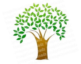 Tree // Clip Art // Clipart // Ash // Fir // Oak // Willow // Family // Leaves // Trunk // Green // Image
