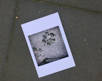 Greeting card print cats paw in brick