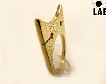 Brass Ring Texture Cat