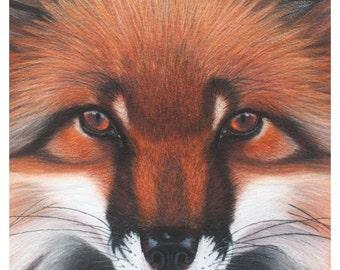 Red Fox Magick A5 Art Print