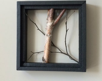 Natural White Birch Shadow Box Frame
